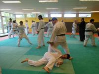 Aikido en action