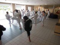 Capoeira en action