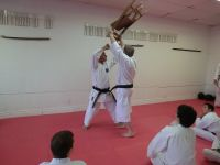 Clinique - Dojo d'Alain Martin