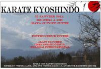 Stage de Karate Kyoshindo