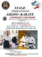 Stage Todokai-Fekamt Aikido-Karate